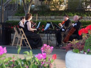 Silver Sound String Quartet